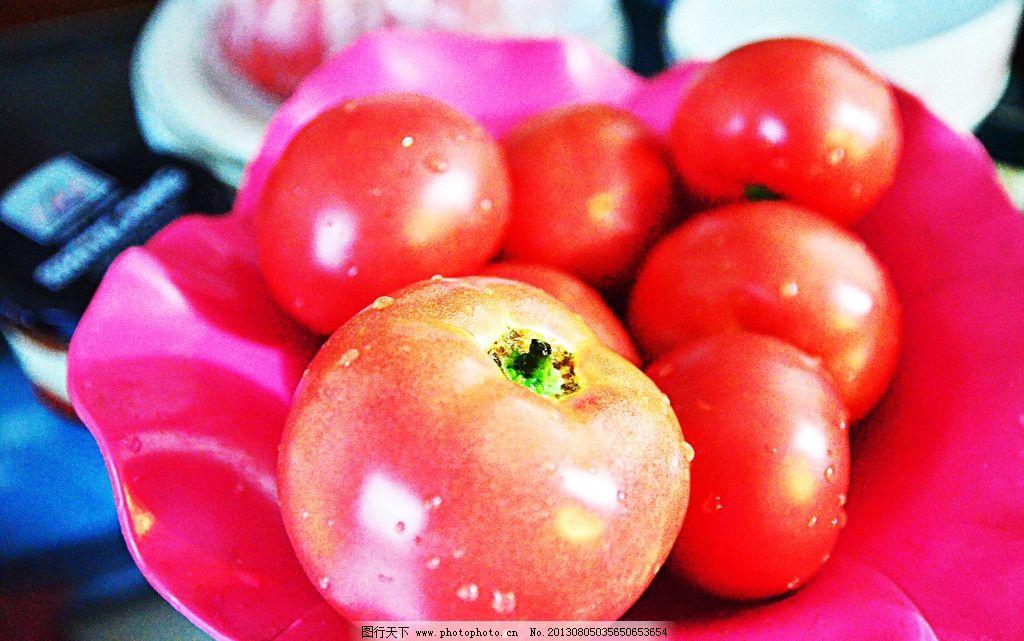 番茄 青岛 聚餐 红彤彤 蔬菜 生物世界 摄影 300dpi jpg