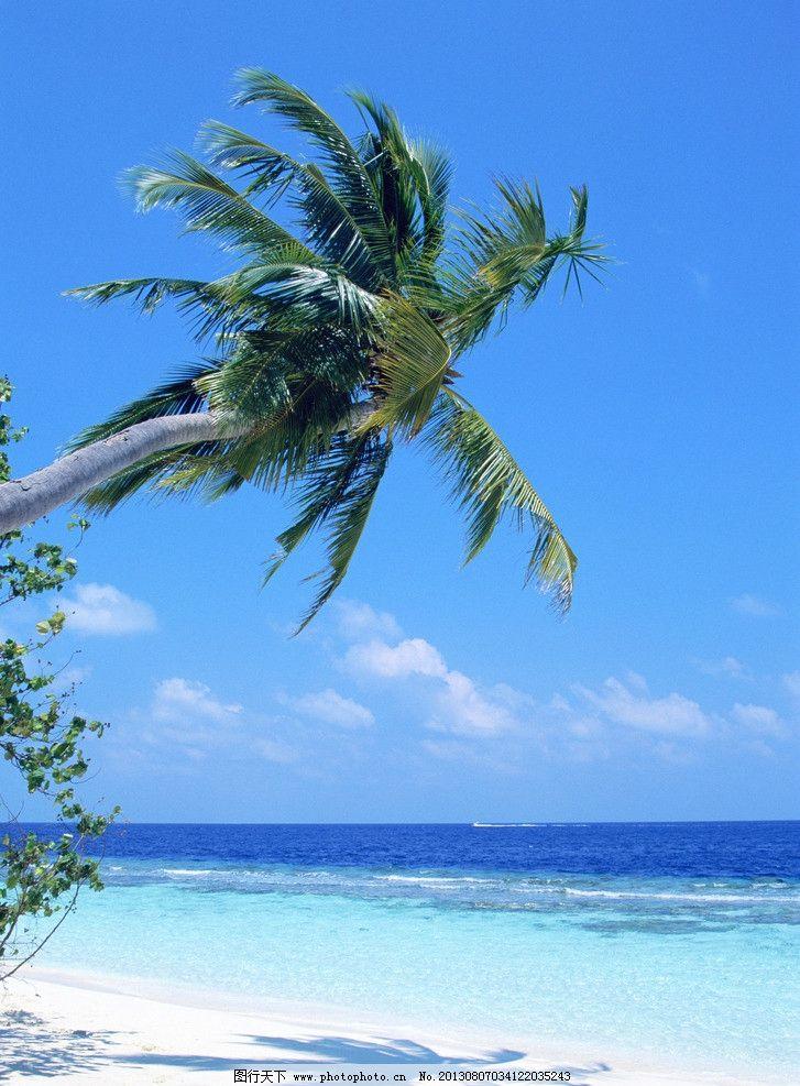 海水沙滩 海滩 沙滩 海水