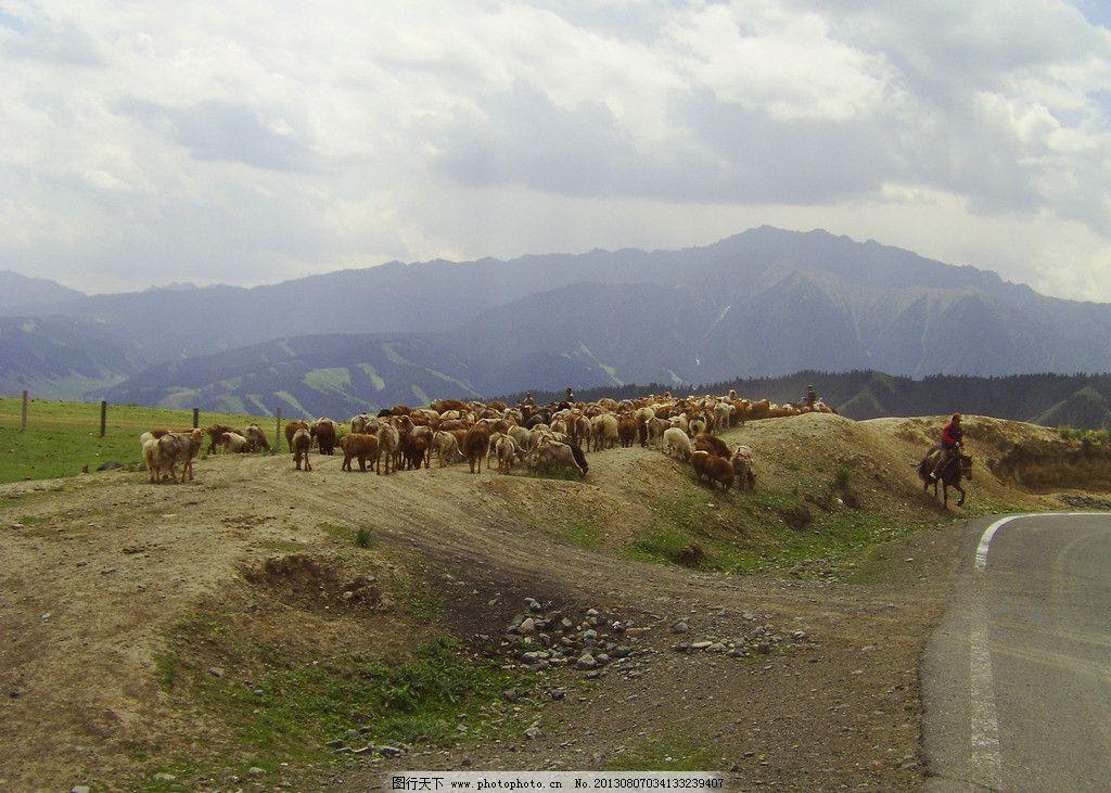 新疆风景 草原 马儿跑 草原公路 大自然 大山 自然风景 旅游摄影 摄影