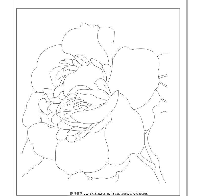 玉兰树枝素描怎么画