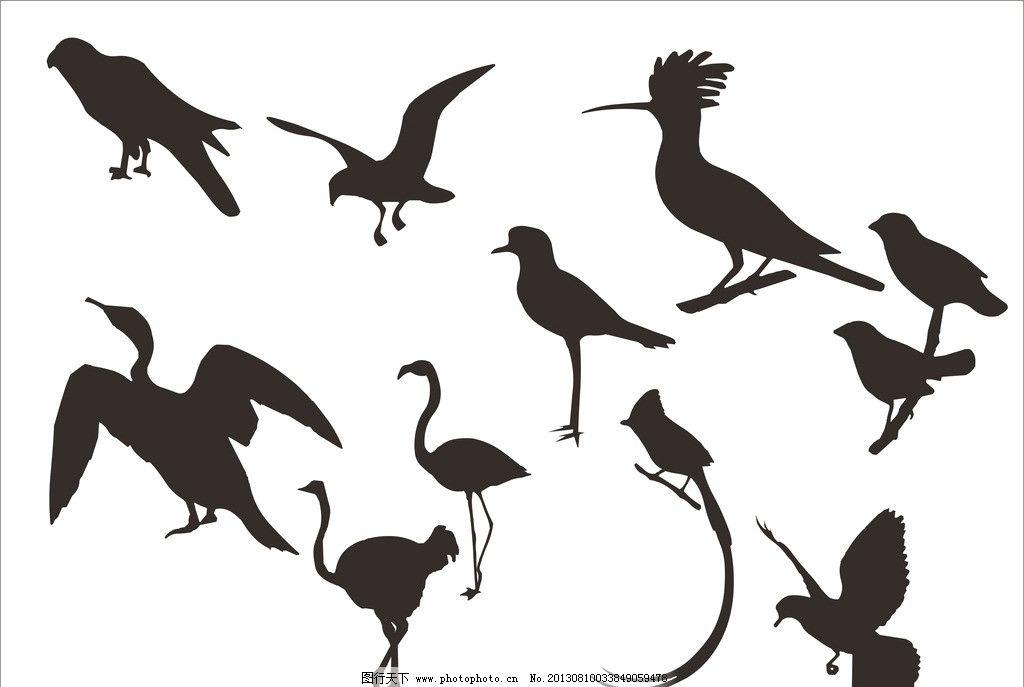 鸟鹤剪影 鸟 鹤 鹰 丹顶鹤