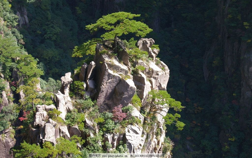 黄山松 安徽 黄山 松树 奇松 蓝天 巨石 怪石 石头 国内旅游 旅游摄影