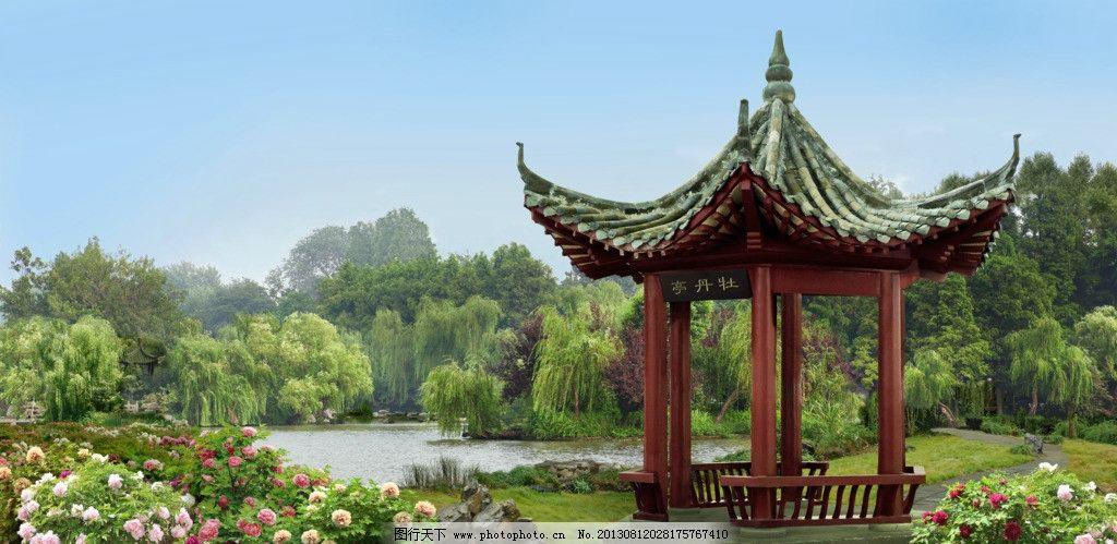 公园 园林 苏州园林 牡丹 牡丹花 花丛 牡丹亭 亭子 仿古建筑