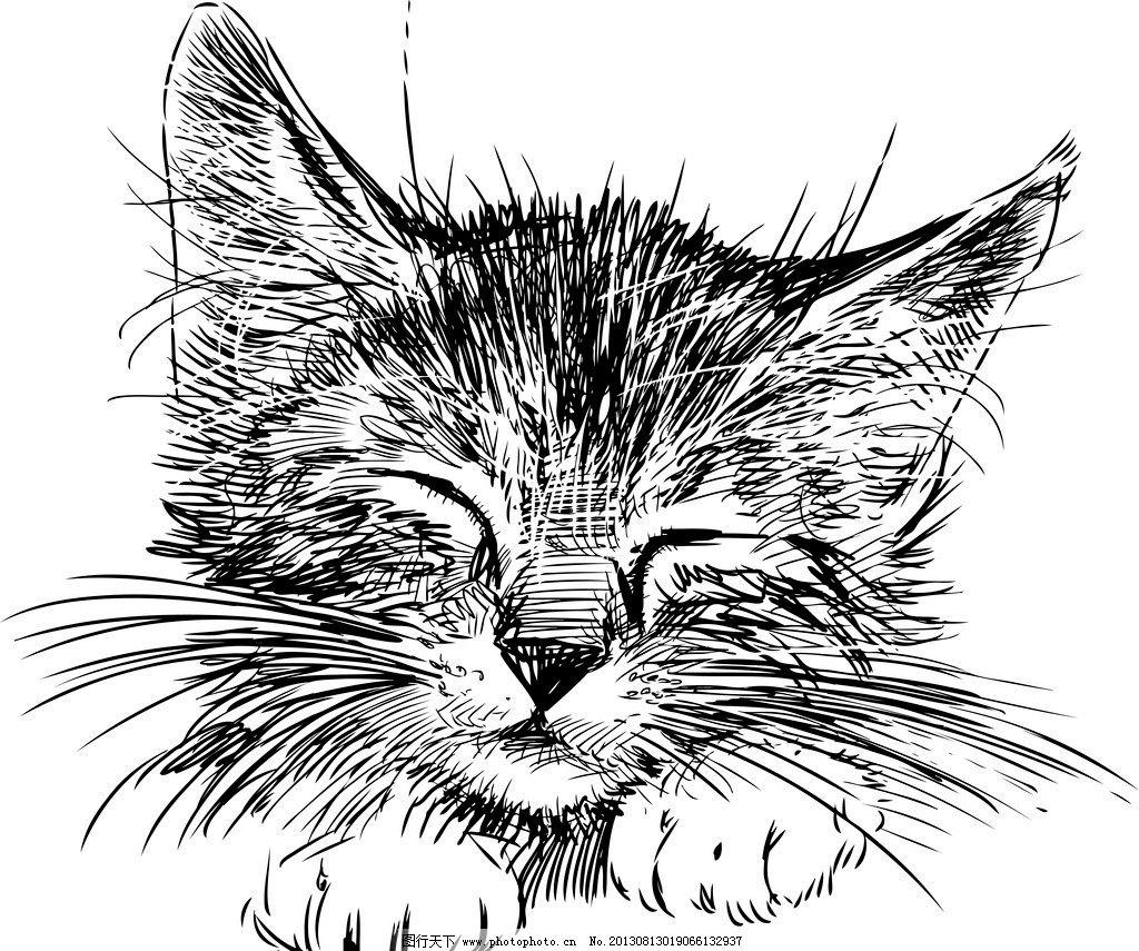 手绘动物 手绘 线描 素描 猫 宠物猫 宠物 猫咪 手绘猫 矢量 美术绘画