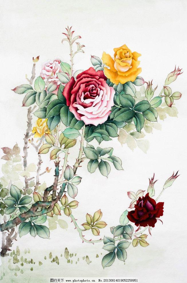 绘画玫瑰花图片