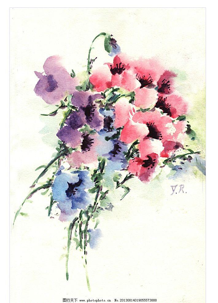 原创水彩画波斯菊 花 花束 红色 花朵 花纹 原创水彩画花卉 绘画书法