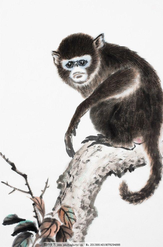 中国最小的猴子-国画猴图片大全大图