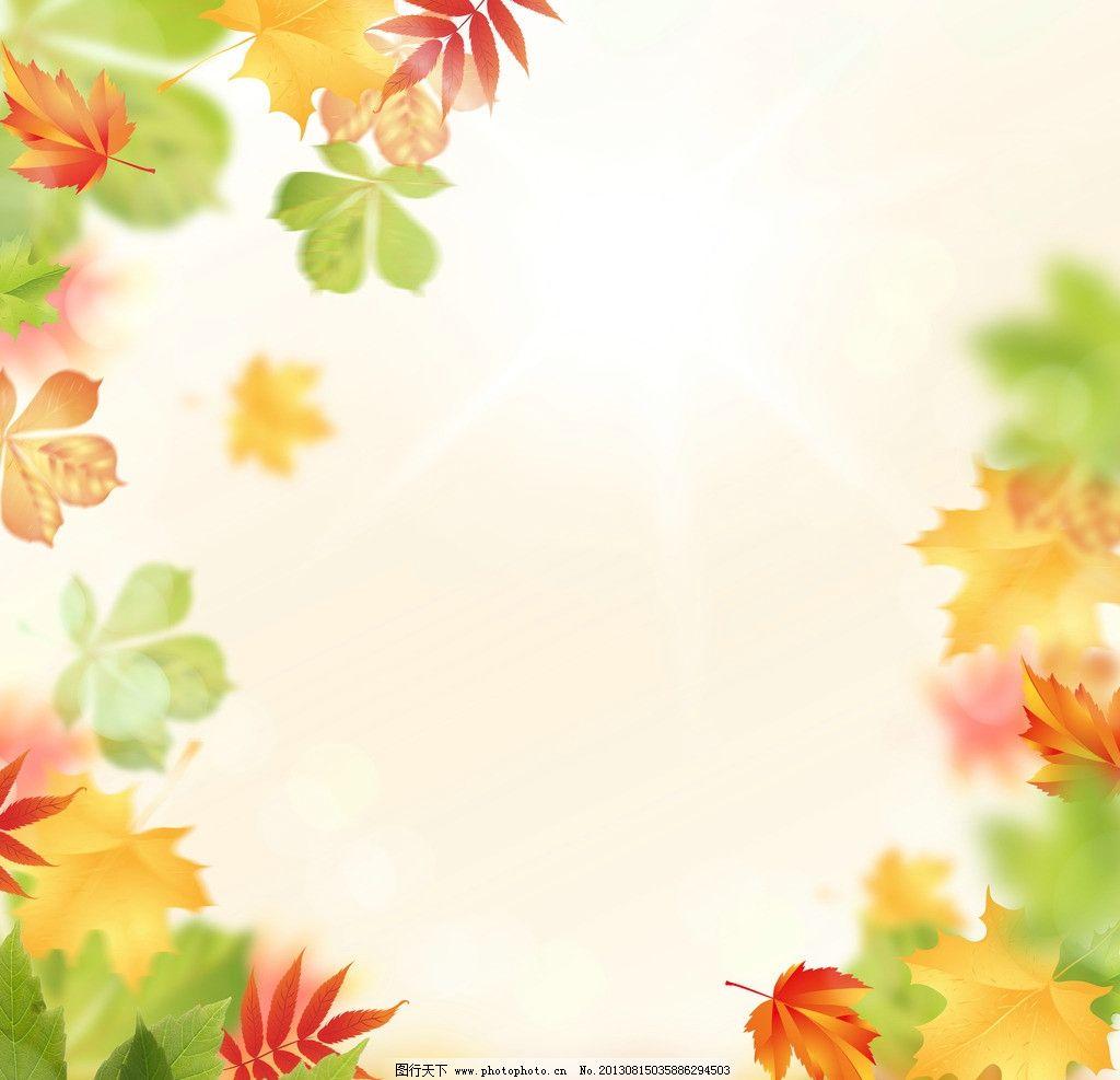树叶边框图片