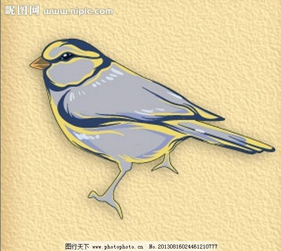 卡通麻雀 鸟 小鸟 彩色