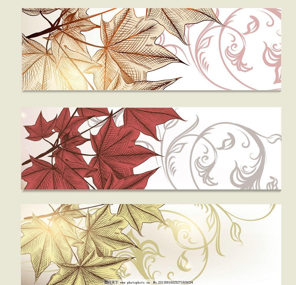手绘枫叶图片