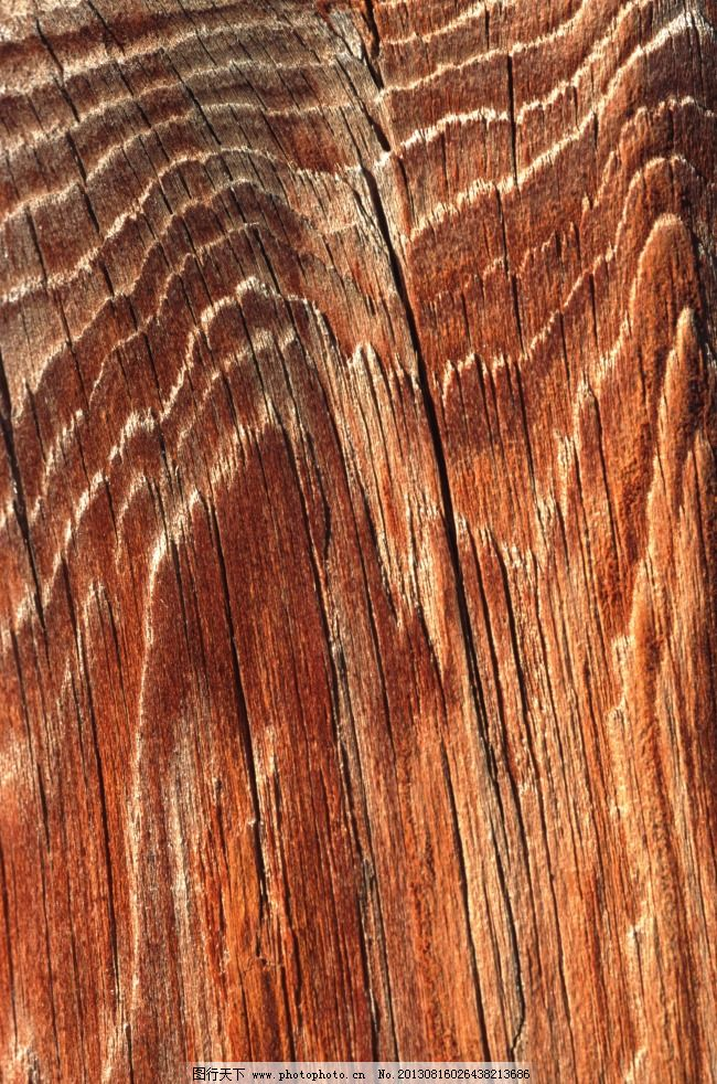 树纹免费下载 肌理 老树 树纹 竖纹 纹理 老树 竖纹 树纹 纹理 肌理