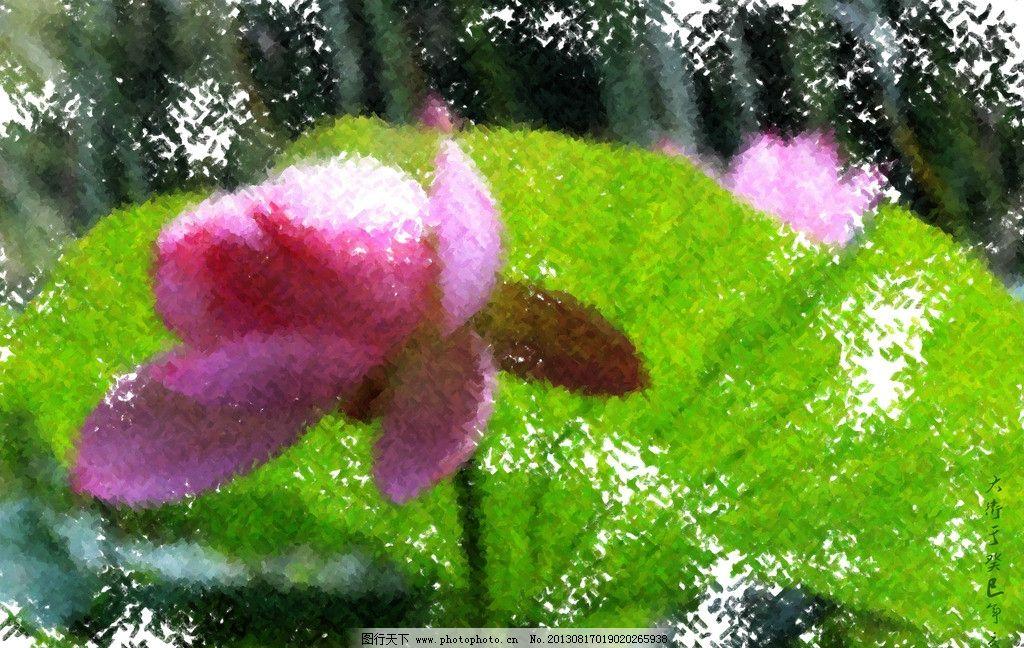 原创荷花手绘 花蕾 荷叶 油画 绘画 绘画书法 文化艺术