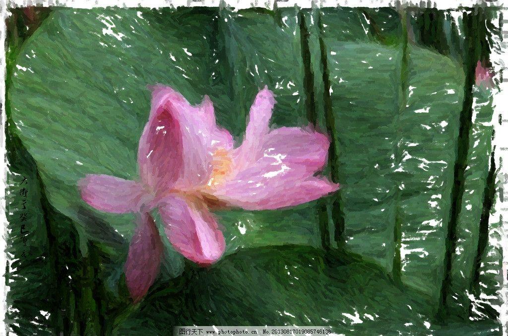 原创鼠绘荷花 花蕾 荷叶 绘画 手绘 花瓣 绘画书法 文化艺术