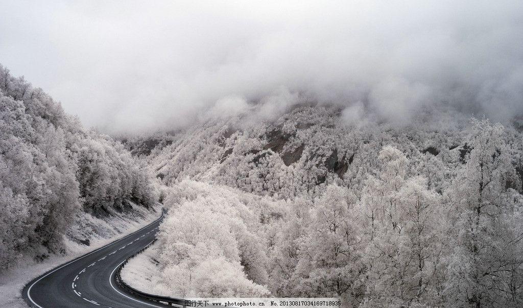 冬天的公路 电脑壁纸 风景壁纸 桌面 冬天 冬季 公路 道路 马路 雪树