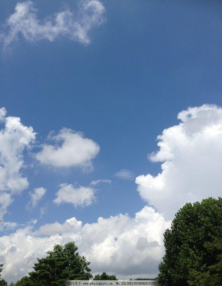 蓝天白云 云彩 松树 摄影