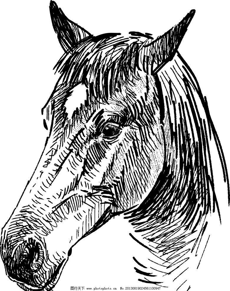 手绘骏马图片