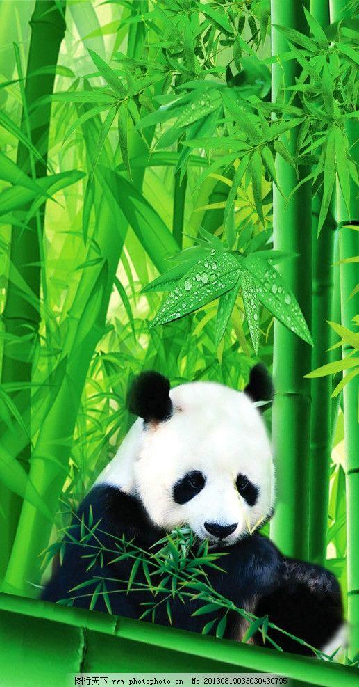 壁纸 大熊猫 动物 517_987 竖版 竖屏 手机