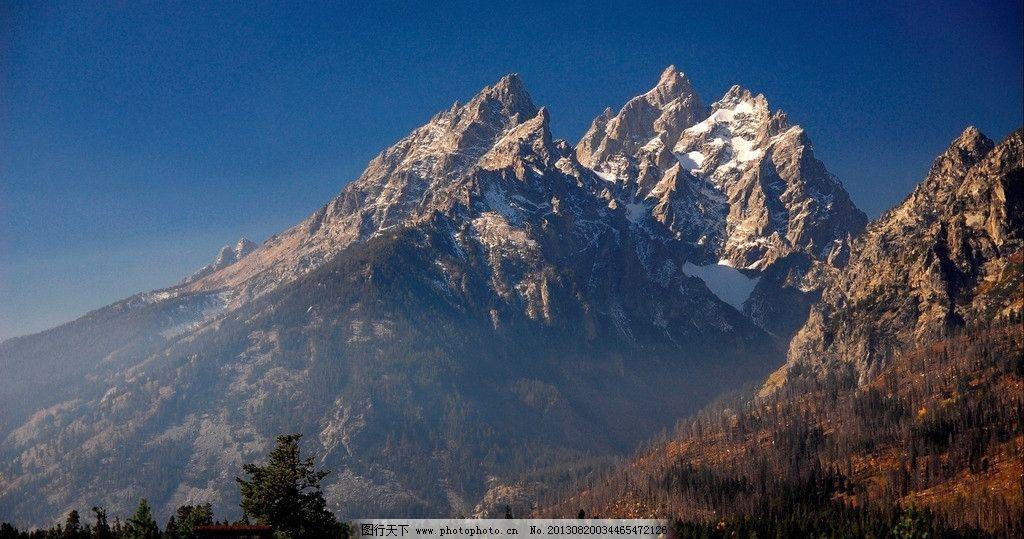 雪山枯草图片
