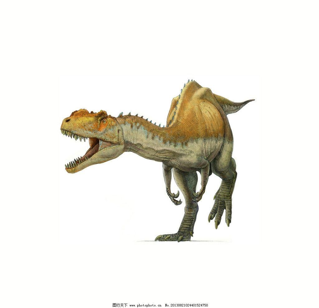 白底恐龙 设计 图案 动物 恐龙 野生 绝迹 野生动物 生物世界 300dpi