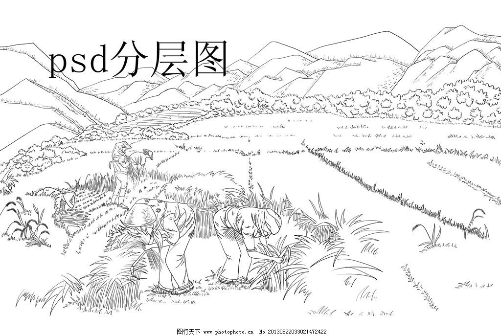 收麦子 收水稻 丰收 手绘 线描 手绘线稿 线描山 插图 农民