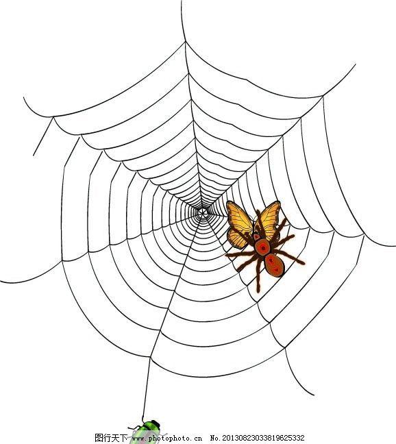 会爬的动物简笔画蜘蛛