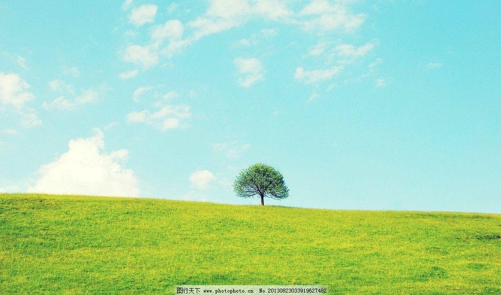 蓝天草地 蓝天 白云 草原 草地 野草 树木 自然 国内旅游 旅游摄影