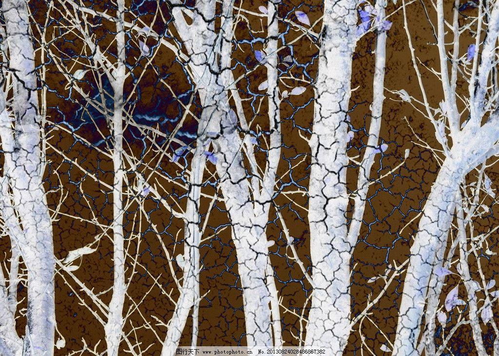 欧美抽象画图片-白桦树枝