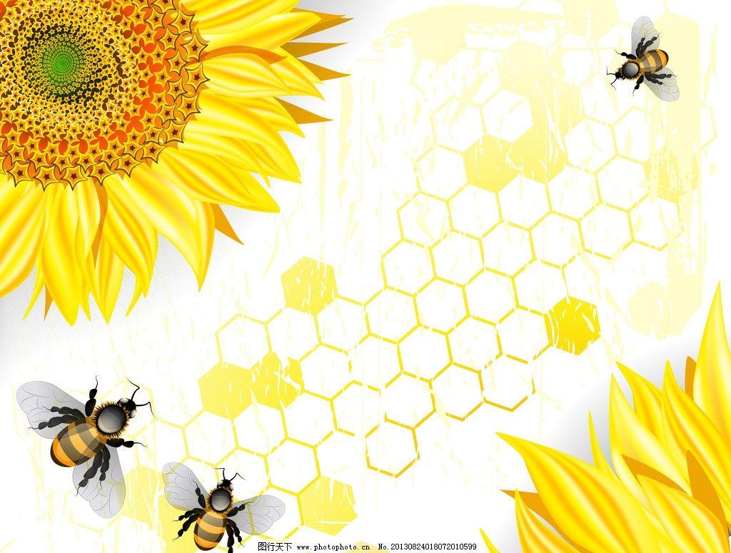 向日葵 手绘向日葵 环保 花卉 蜂蜜 蜜蜂 蜂巢 生态 环保背景 矢量