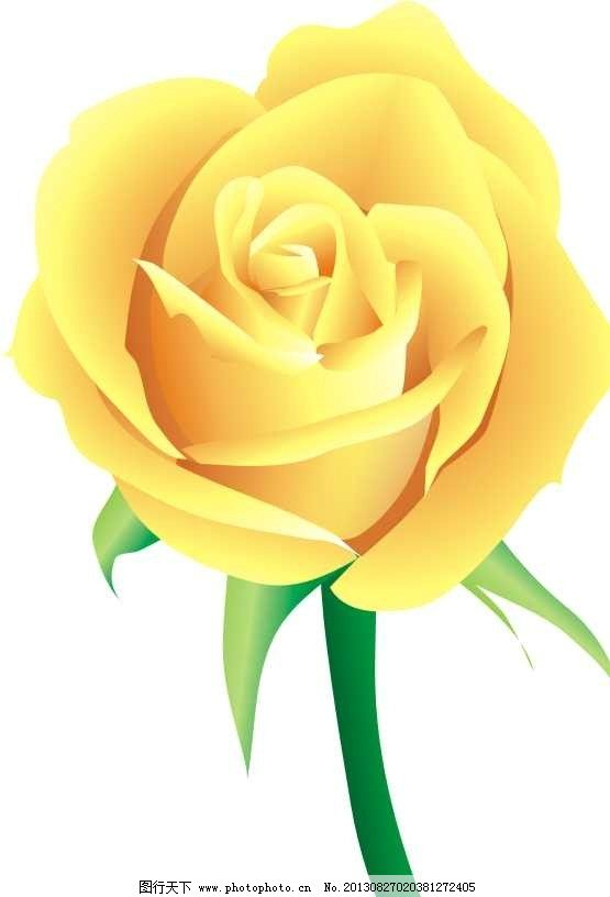 月季花 花 月 黄色 花朵 矢量 花纹花边 底纹边框 cdr