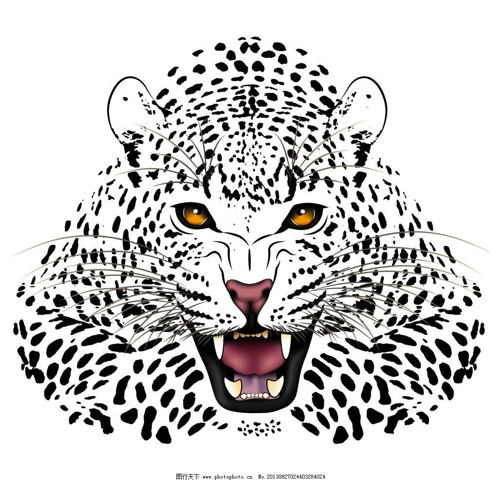 豹子全身素描步骤大全