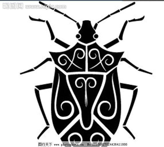 昆虫 手绘 素描 速写 线条 动物 臭娘娘 蝉 卡通动物 野生动物 生物世