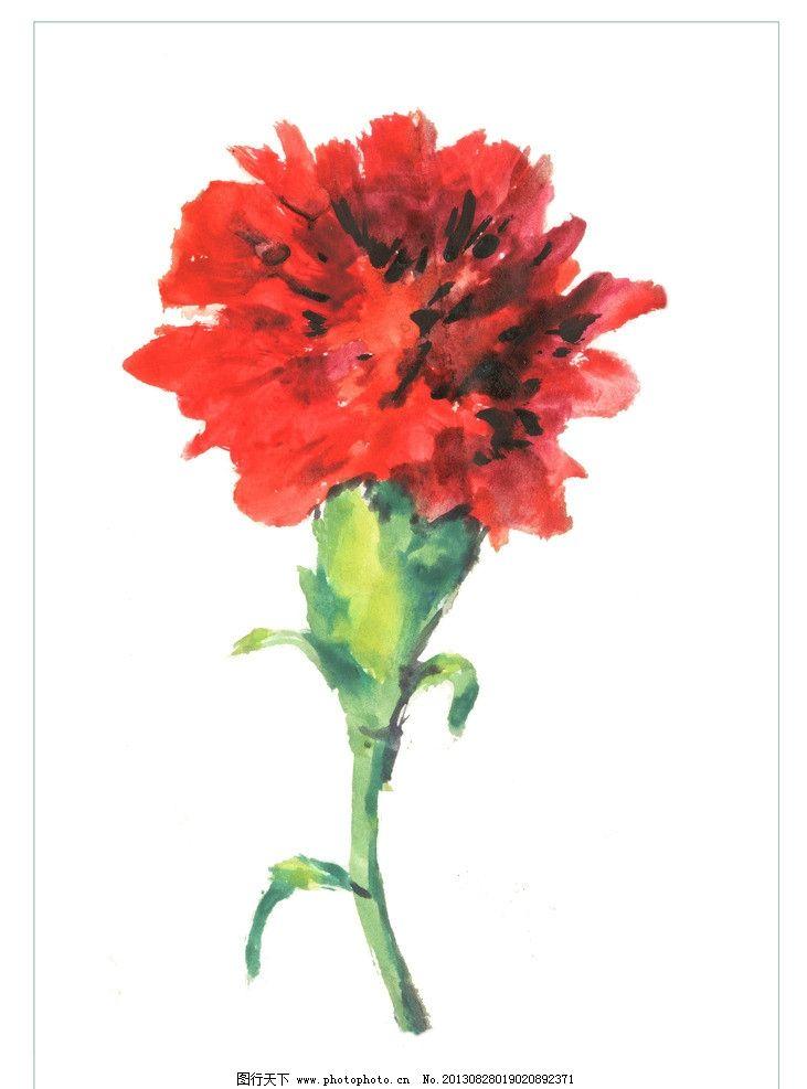 水彩红色康乃馨图片_绘画书法_文化艺术_图行天下图库