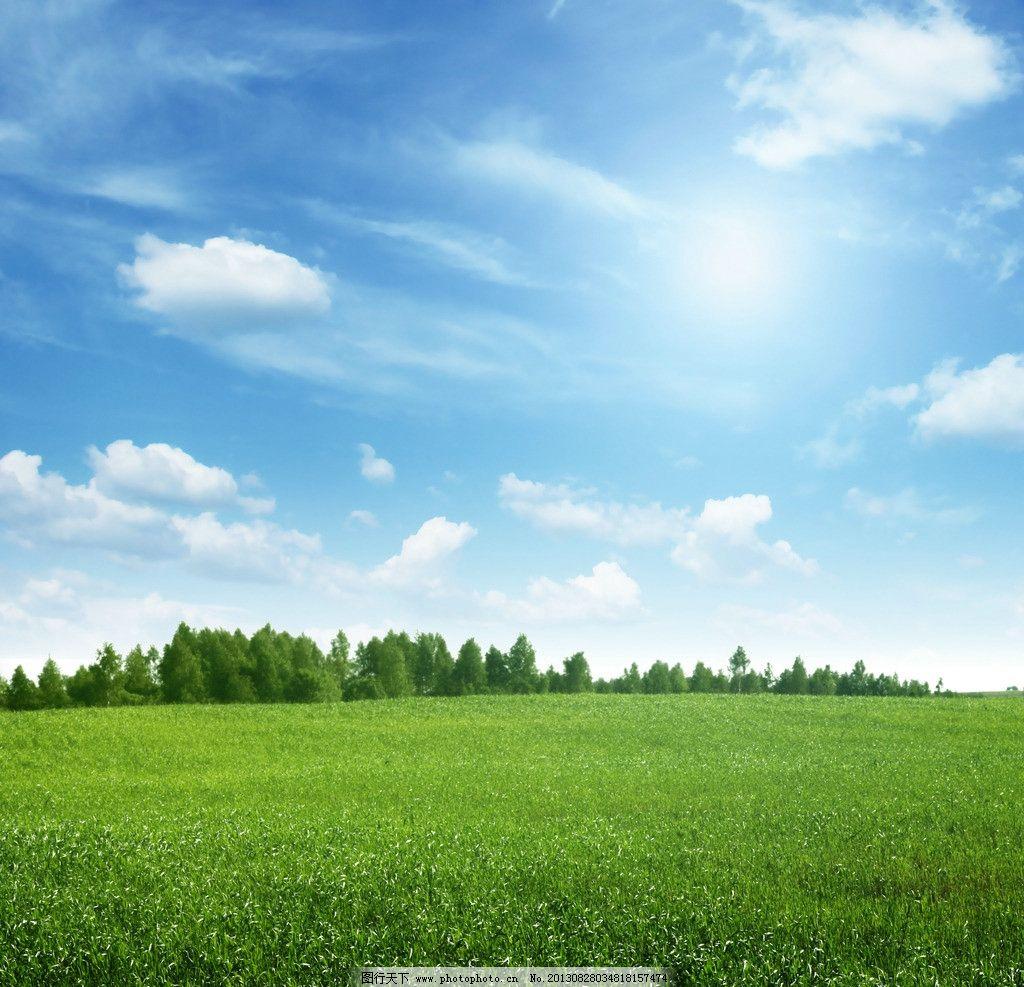 蓝天青草地 蓝天 青草地 绿色草地 太阳 树林 白云 地平线 自然风景