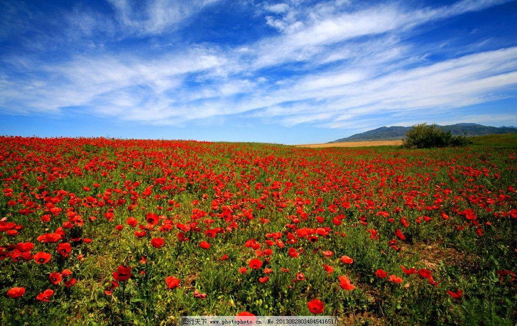 额敏自然风光图片_自然风景