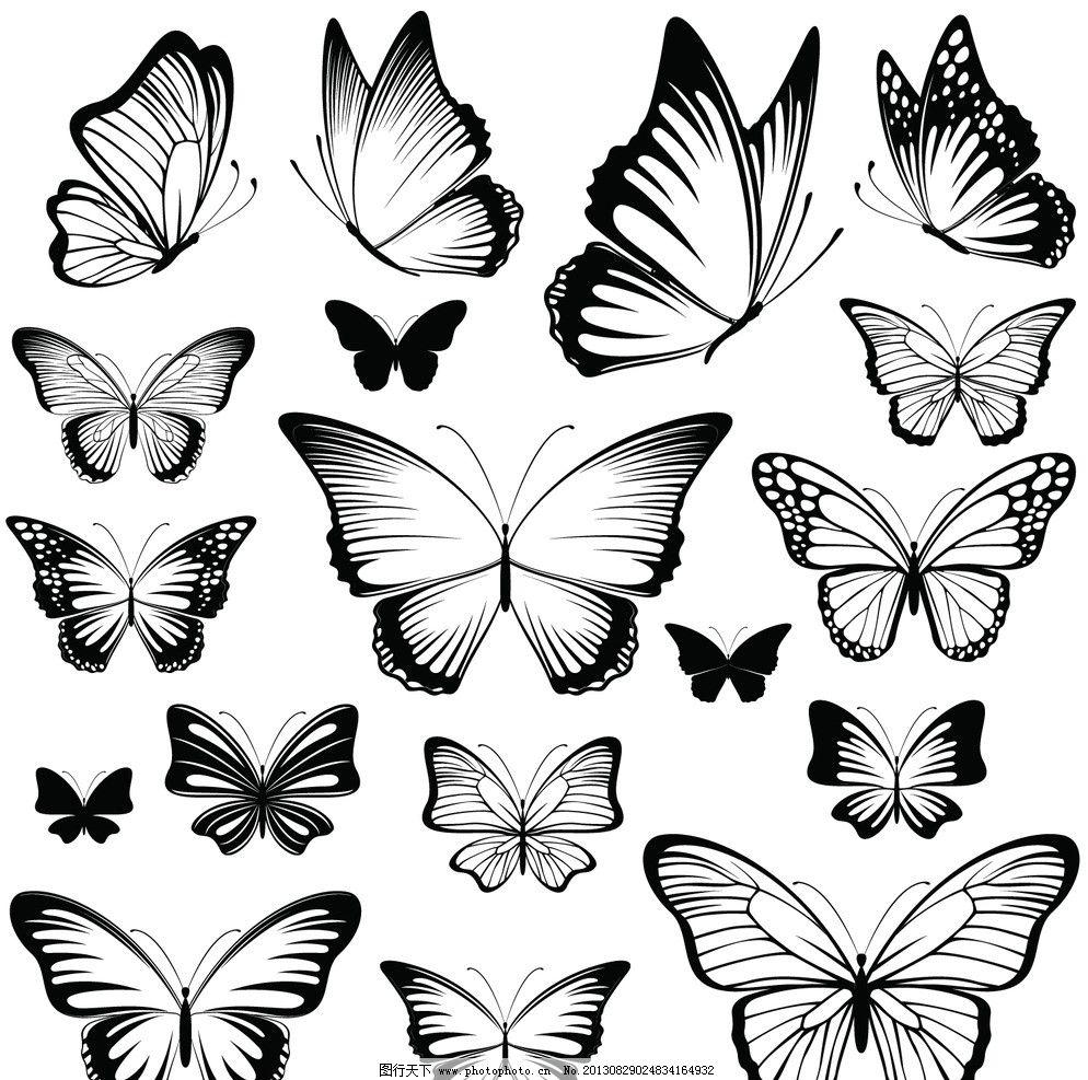 蝴蝶 黑白蝴蝶 矢量 花纹 花边 边框 底纹 昆虫 生物世界 eps ai