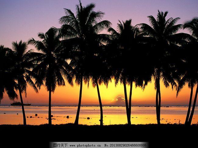 夕阳风景 夕阳风景免费下载 海 海岸 椰子树 图片素材 风景生活旅游餐