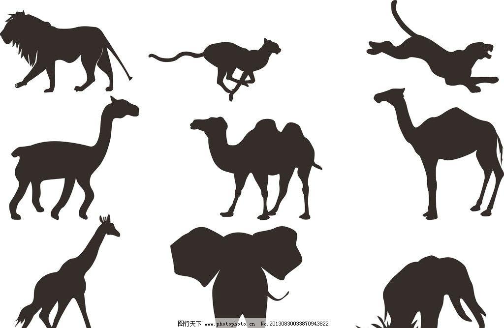 动物 动物大全 动物素材 骆驼 大象 狮子 老虎 豹子 长颈鹿 袋鼠 剪影