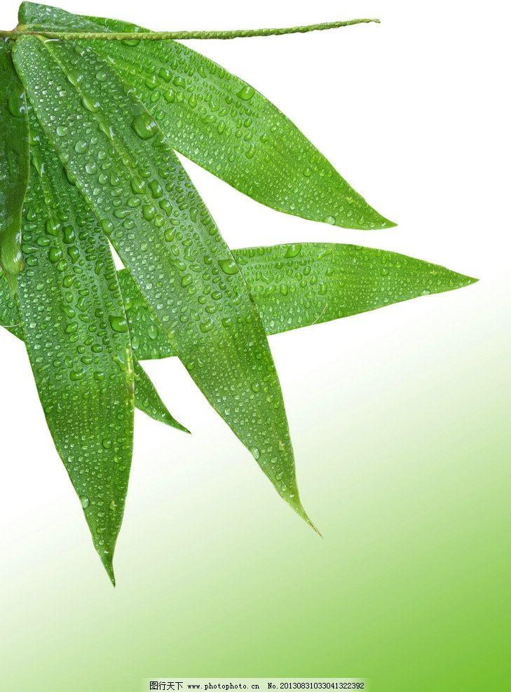 绿色竹叶欧式沙发套