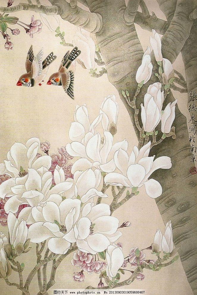 玉兰 小鸟 国画 工笔画 花鸟画 书画 绘画 张德泉 绘画书法 文化艺术