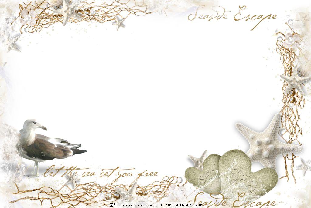 花样相框 png 免抠图 框架 爱心 鸟 海星 边框相框 底纹边框 设计 118