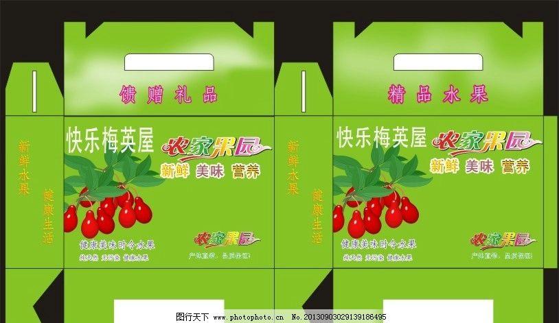 水果包装 李子 李子包装包装 包装展开模板 纸盒 包装设计 水果包装盒