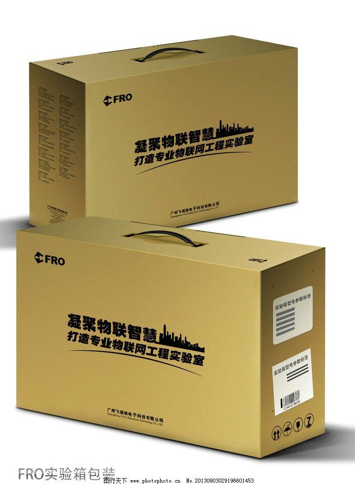 实验箱包装效果 箱子 包装箱 盒子 纸箱 包装设计 广告设计模板