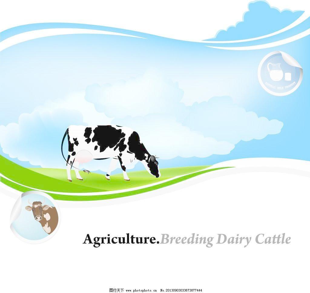 奶牛牧场卡通海报矢量图片