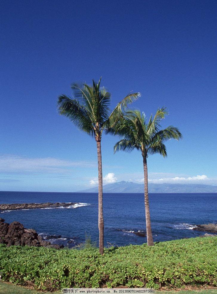 海边椰子树 海南风景 椰树 大海 蓝天碧水 白云 海岸 小岛 海边风景