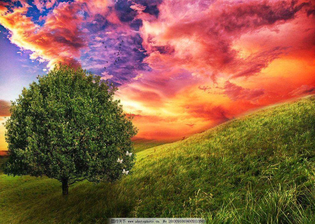 树木草地与山峰美景风图片