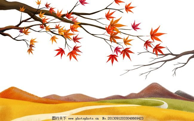 秋天枫树红叶枫叶山图片