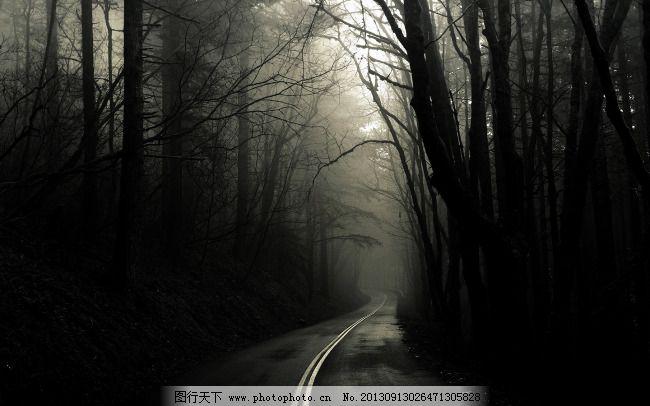 黑色 恐怖 树林 小路 黑暗 树林 小路 阴暗 恐怖 黑色 图片素材 风景