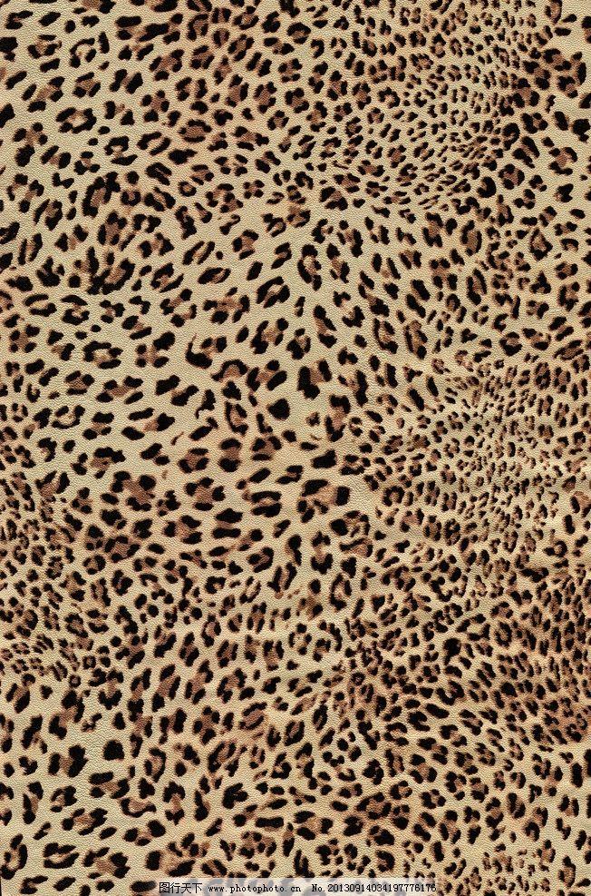 豹纹 豹点 纹样 动物纹 贴图 沿途的风景 自然风景 旅游摄影