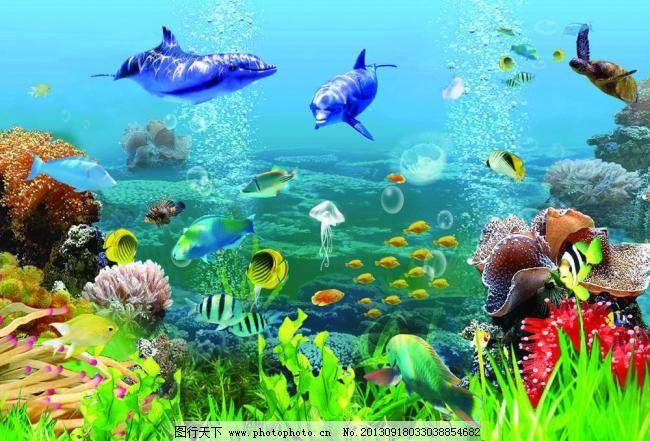 热带鱼 鱼缸 水族馆背景 水族箱 水族箱背景 观赏鱼 淡水鱼 珊瑚 海草