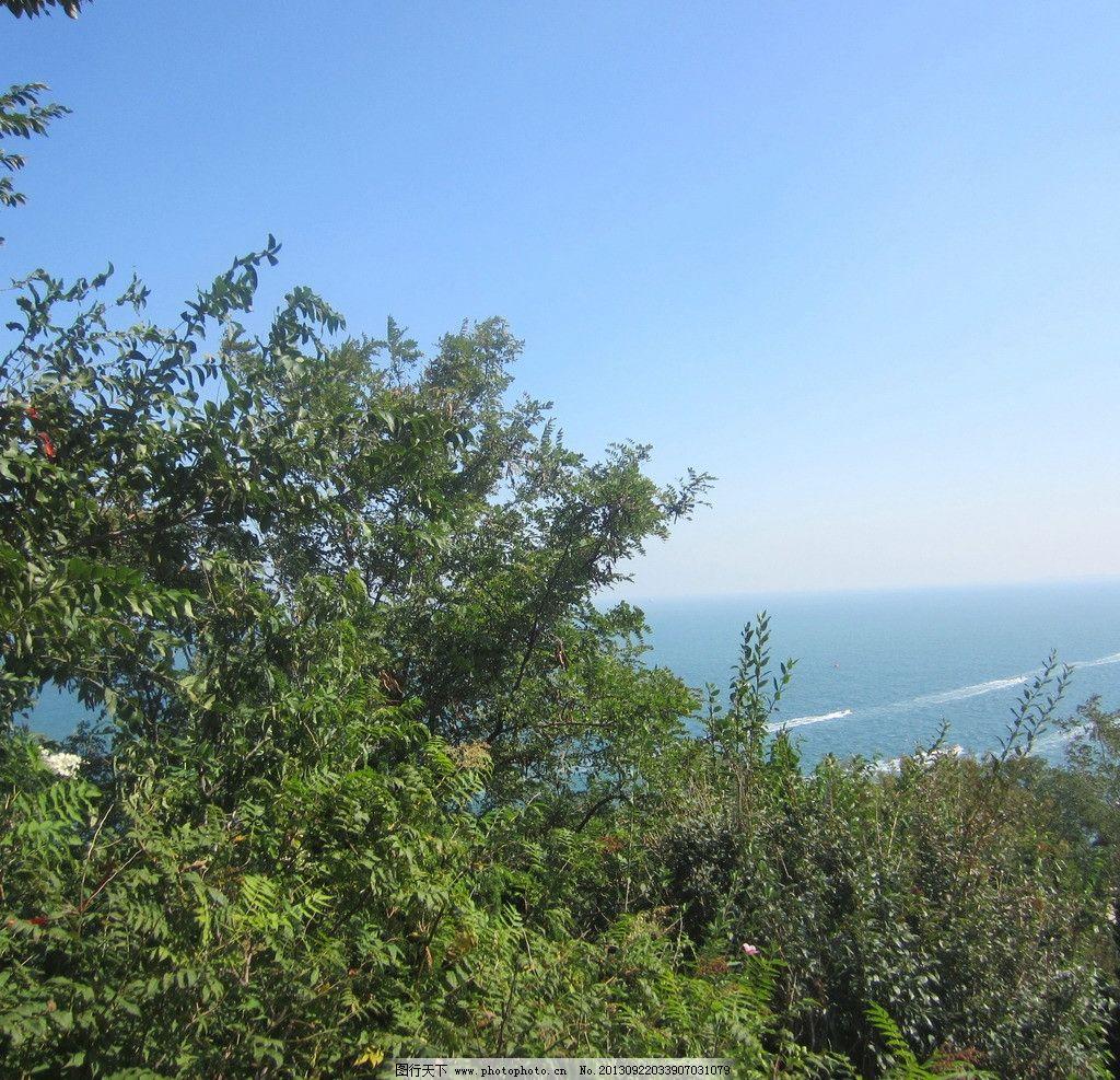 天空 蓬莱 山东 蓝天 白云 树木 绿化 大海 国内旅游 旅游摄影 摄影